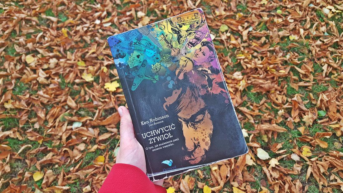 Uchwycić Żywioł - opinia - inspirująca książka Kena Robinsona