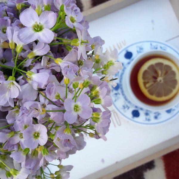Herbata z cytryną i kwiaty - tu i teraz kwiecień