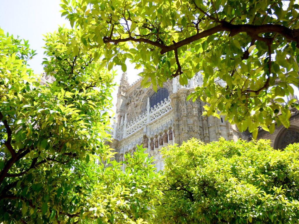 katedra w Sewilli - zdjęcia z Hiszpanii