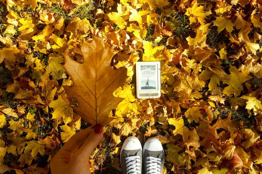 kupić czytnik - czy warto - jesień i czytnik Pocketbook Touch Lux 3